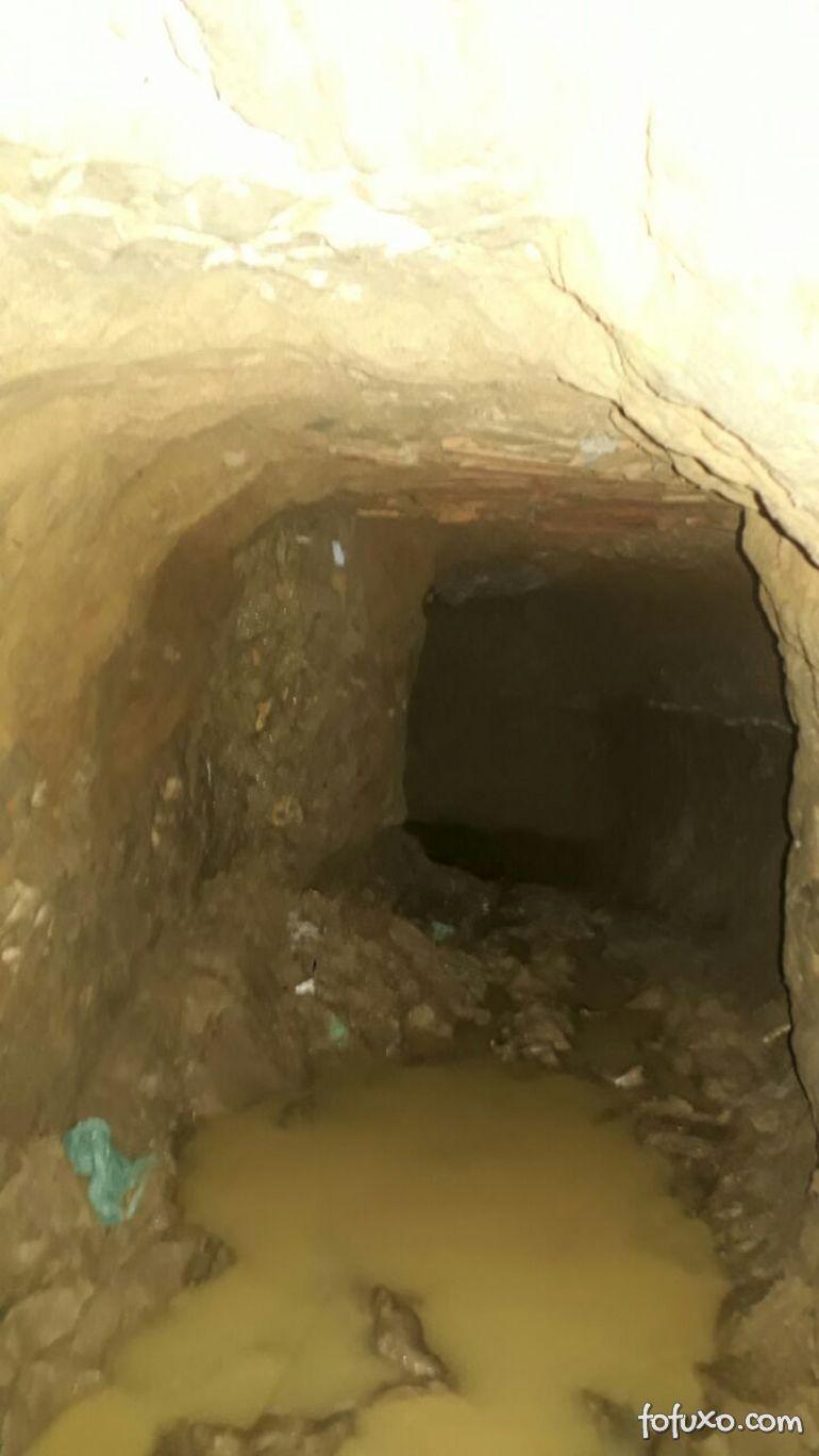 Cachorro encontra túnel que seria utilizado para fuga de detentos