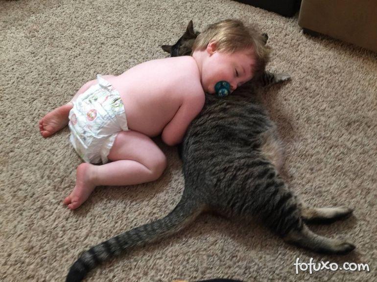 Gato e bebê: podem dormir na mesma cama?