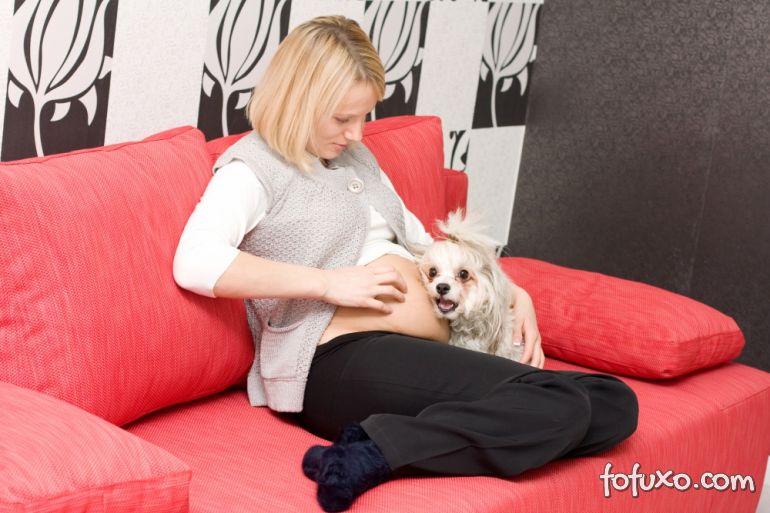 Pesquisa afirma que cães sentem ciúmes quanto crianças pequenas