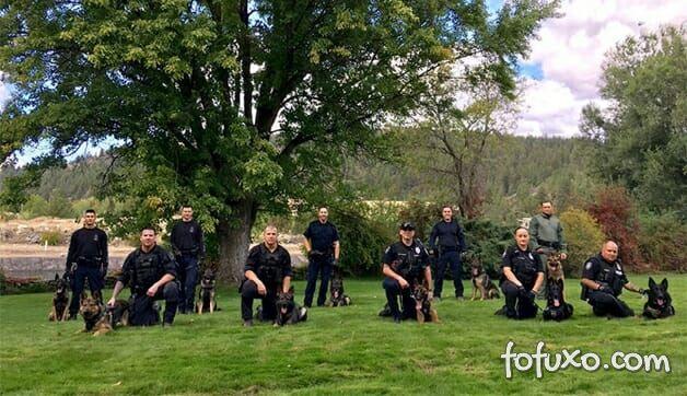 Polícia canadense faz calendário com fotos de seus cães 3