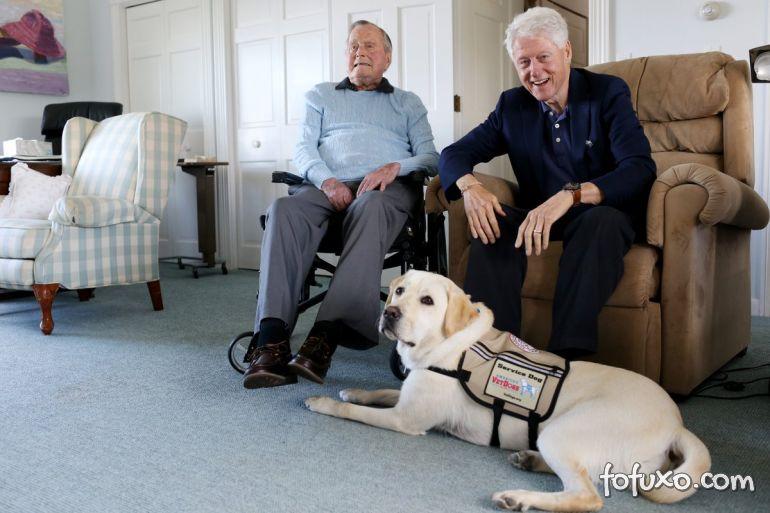 Cachorro de ex-presidente dos EUA falecido aparece ao lado do caixão do ex-dono