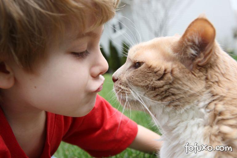 5 benefícios para as crianças de se ter um gato