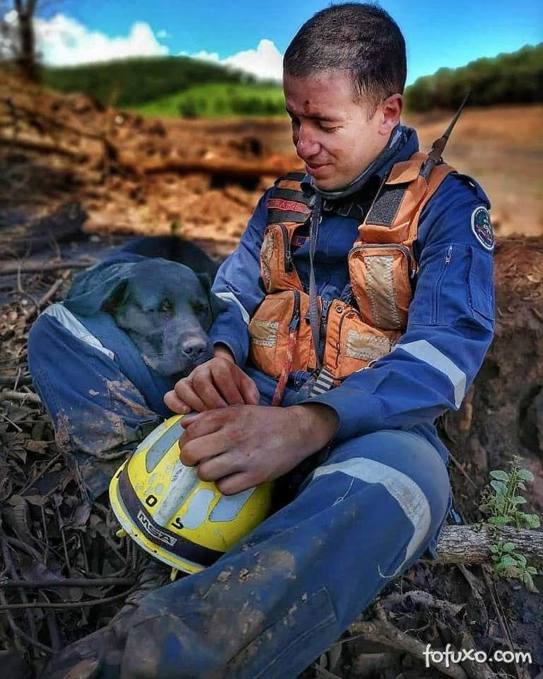 Cão de resgate morre e recebe homenagens em SC