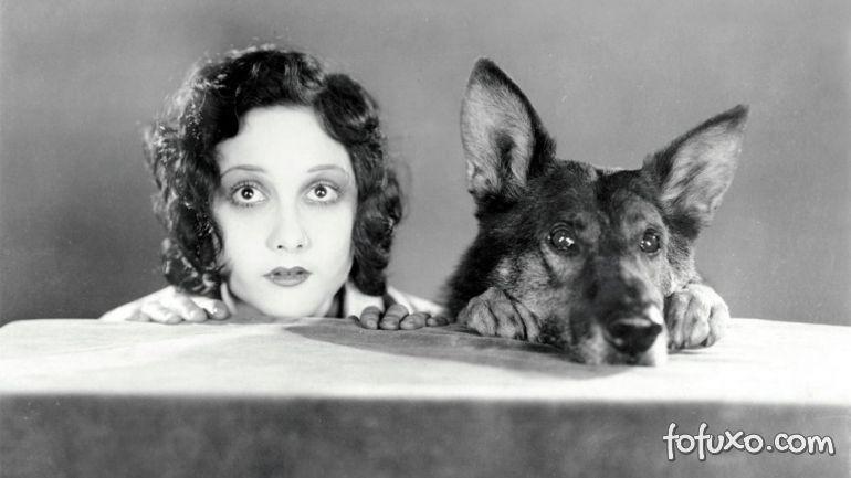 Relembre 5 cachorros inesquecíveis do cinema
