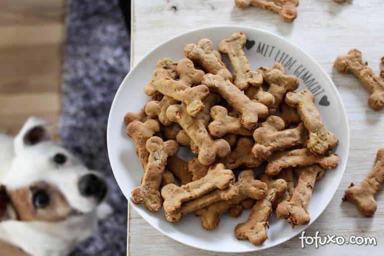 Confira os melhores petiscos para adestrar cães