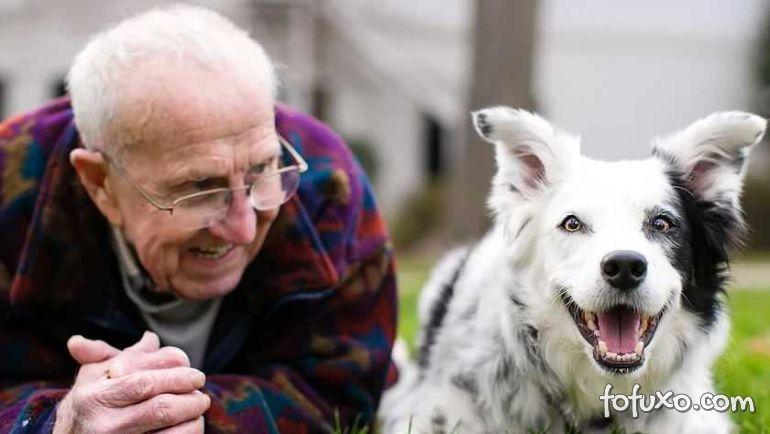 Cachorro considerado mais inteligente do mundo morre aos 15 anos