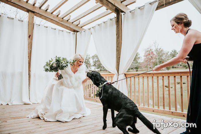Noiva faz ensaio com cachorro e resultado fica incrível - Foto 1