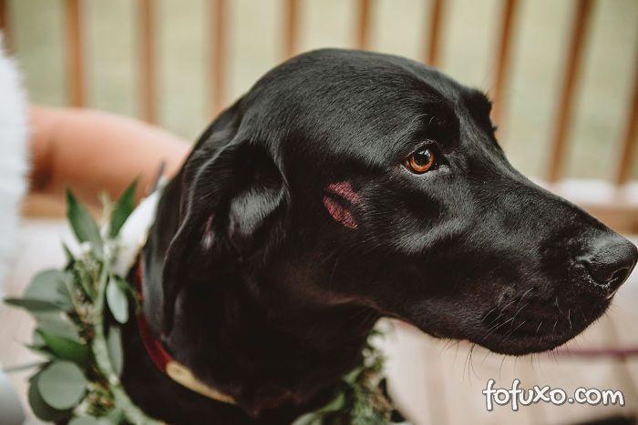 Noiva faz ensaio com cachorro e resultado fica incrível - Foto 6