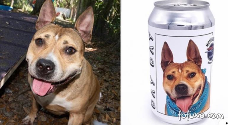 Mulher reencontra cachorro perdido graças a latinhas de cerveja