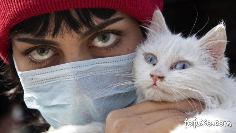 Veterinários pedem que infectados pelo coronavírus evitem contato com animais