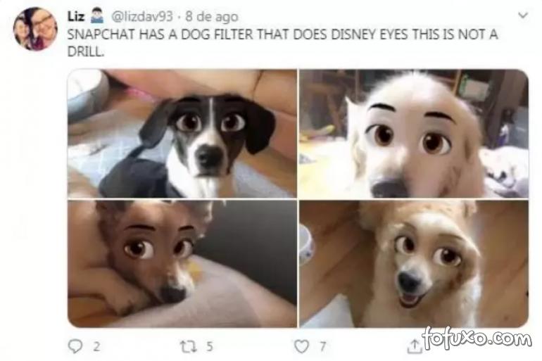 Snapchat lança filtros da Disney para aplicar em pets - Foto 4