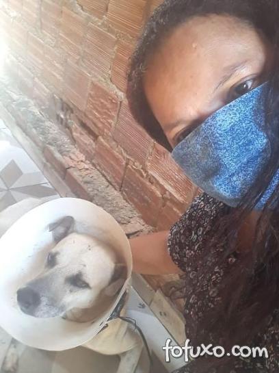 Mulher adota cão após perder mãe para Covid