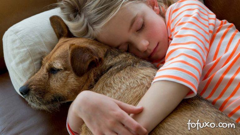 Animais domésticos já superam número de crianças em lares brasileiros