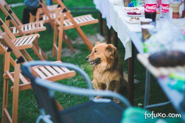 5 dicas para fazer uma festa para o seu cachorro