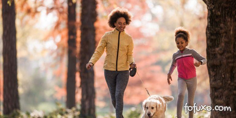 3 exercícios para ajudar seu cão a perder peso