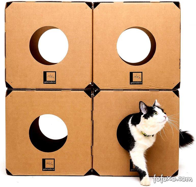 5 dicas de presentes para divertir o seu gato