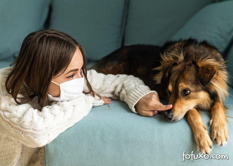 Estudo afirma que Covid é comum em cachorros e gatos domésticos