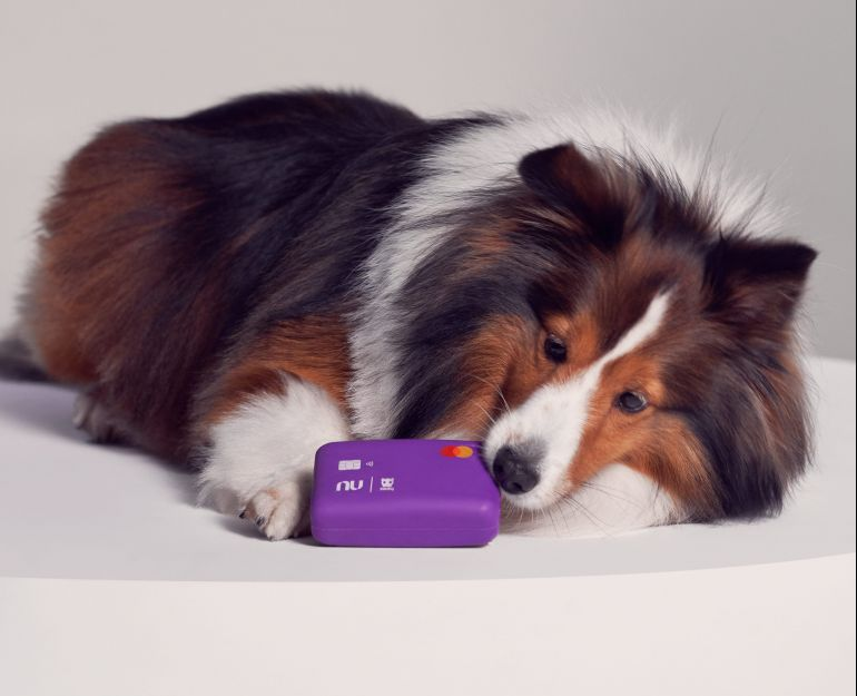 """Nubank e Zee.Dog lançam """"cartão"""" especial para cachorro"""