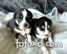 Lucy & Lara