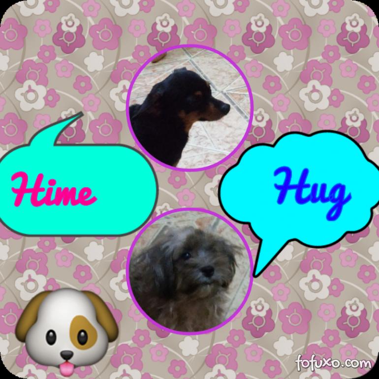 Home e Hug
