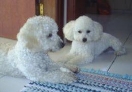 Nicky & Lunno